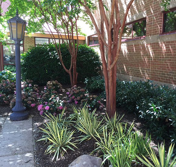 Commercial Landscape Maintenance in DC, MD, VA | Complete Landscaping Service
