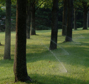 Commercial Irrigation Services in MD, DC, VA | Complete Landscaping Service, Commercial Landscape Contractors