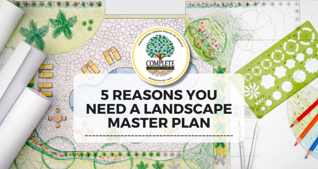 5 Reasons You Need a Landscape Master Plan