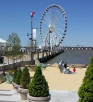 National Harbor- Commercial Landscape Project – Complete Landscaping Service