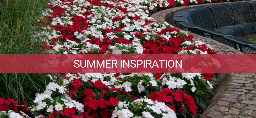 summer flower inspiration