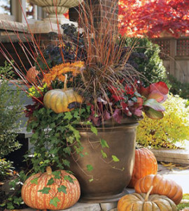 Seasonal Flower Plantings - Complete Landscaping Service, Commercial Landscaping Contractors serving MD, DC and VA