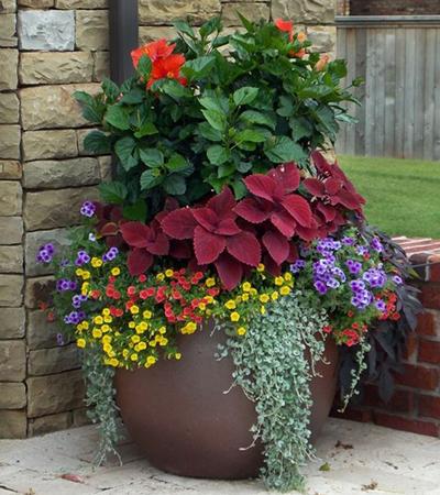 pot planter 2
