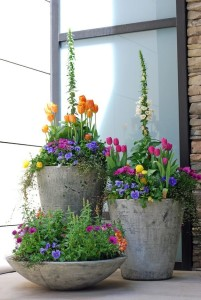 Spring Inspiration - Plantings for your commercial property (building, apt, condo, retail, office) by Complete Landscaping Service, serving MD, DC, VA