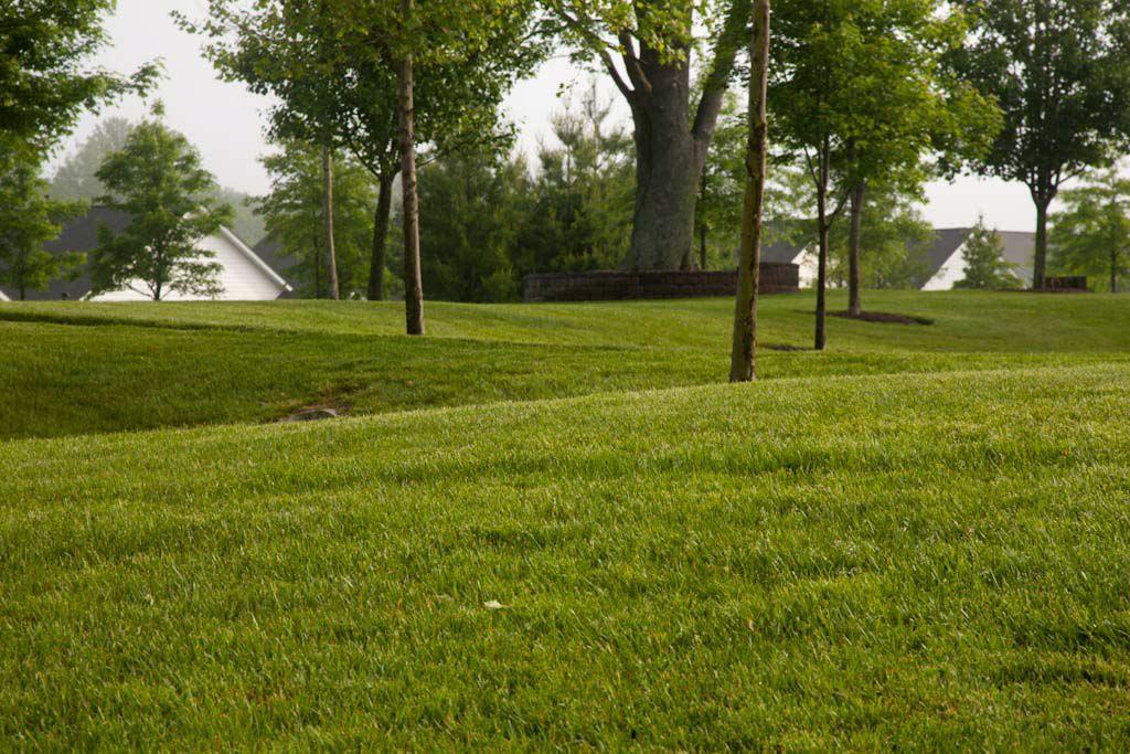 Symphony Village - Commercial Landscape Maintenance - Complete Landscaping Service in MD, DC, VA