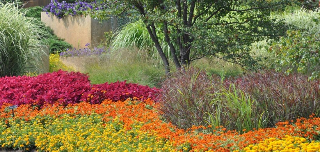 Seasonal Flower Plantings for your commercial property - Complete Landscaping Service