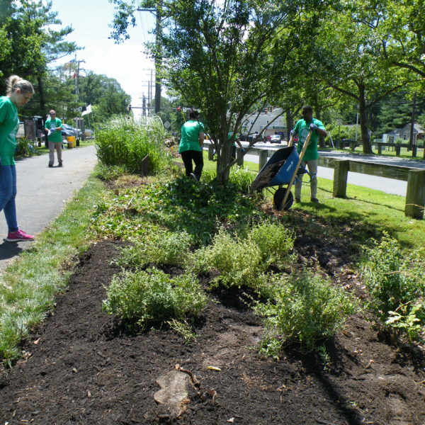 In the Community - Complete Landscaping Service
