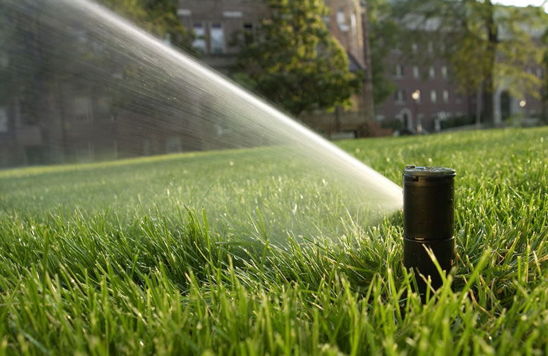 Why Irrigation is Important for Your Commercial Property - Complete Landscaping Service