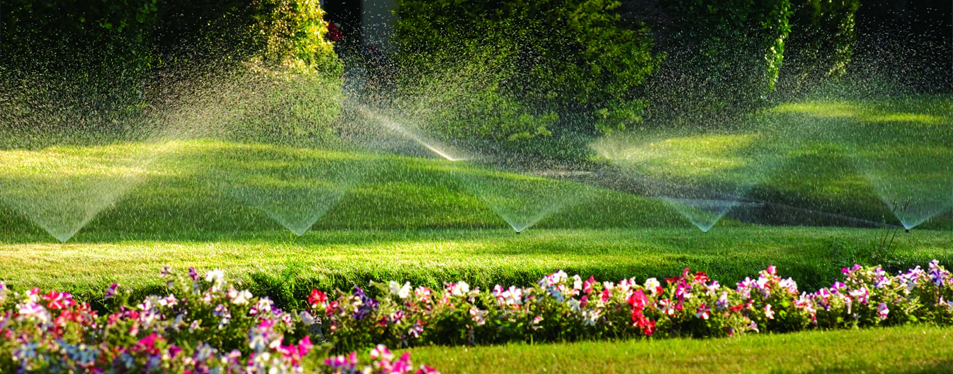 Why Irrigation is Important for Your Commercial Property