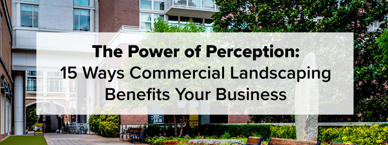 How Commercial Landscaping Benefits Your Business | Complete