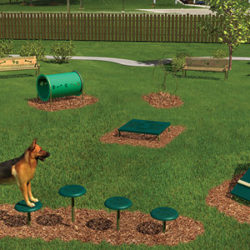 Should You Add a Dog Park to Your Apartment Complex?