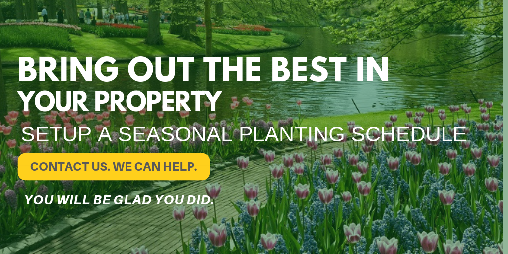 Seasonal Planting Services