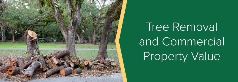 Tree Removal and Commercial Property Value