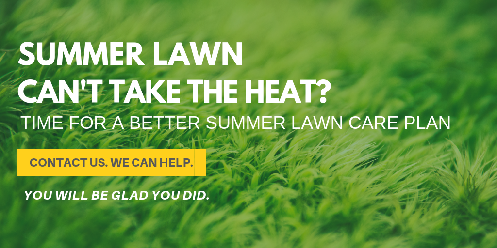 Summer Lawn Care - Complete Landscaping - MD, DC, VA