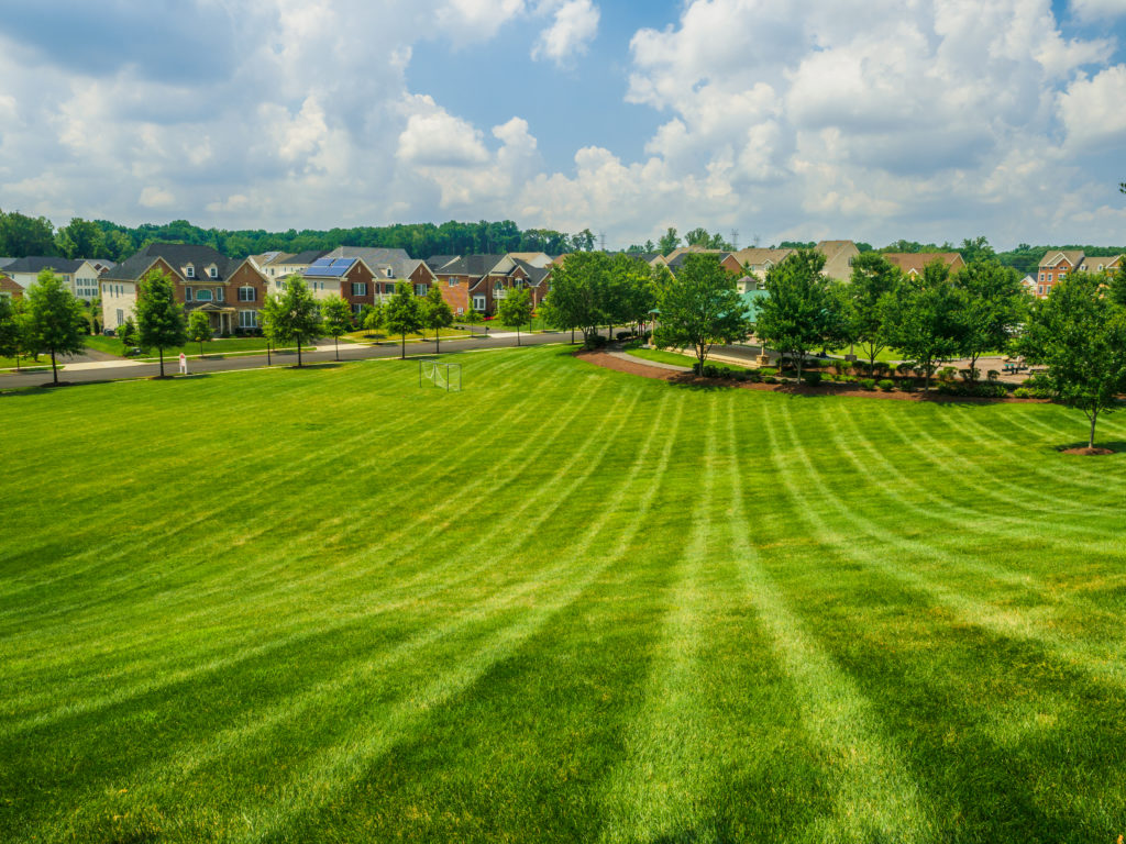 Commercial Maintenance - Complete Landscaping Service MD, DC, VA