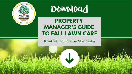 Fall Lawn Care Guide - Complete Landscaping Service