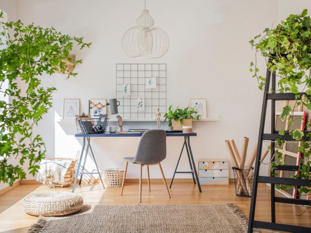 Houseplants beautify a home office.
