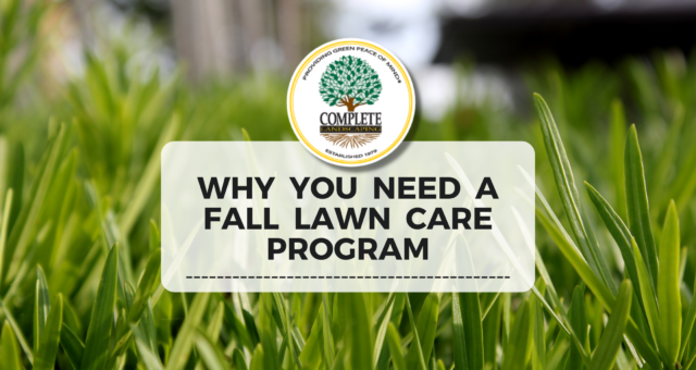 Why a Fall Lawn Care Program Could Make or Break Your Commercial Property