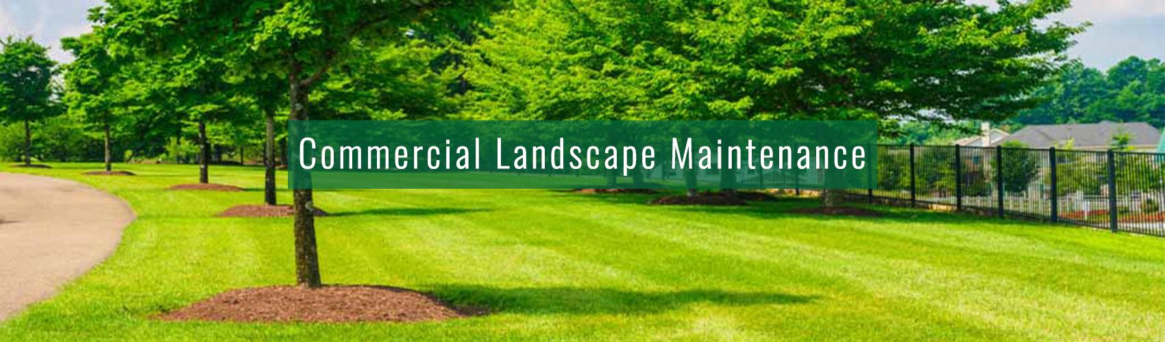 Commercial Landscape Maintenance Complete Landscaping Service