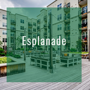 portfolio-esplanade-300[1]