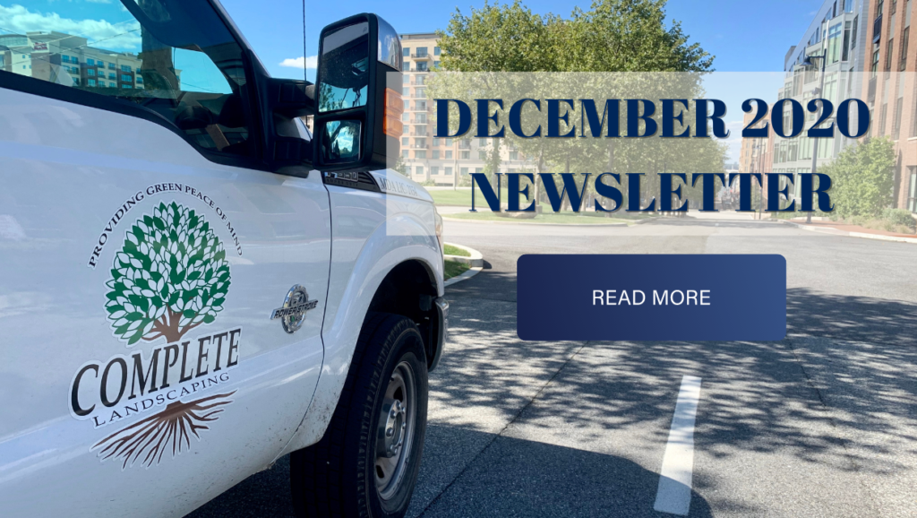 Complete Landscaping Service December Newsletter