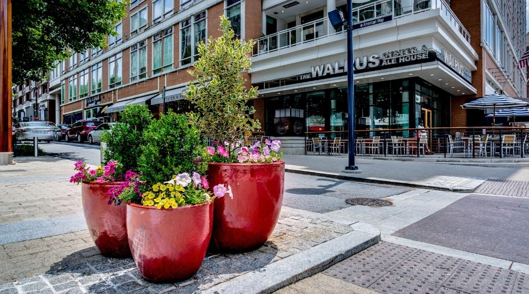 Commercial Landscaping Services for Retail Buildings