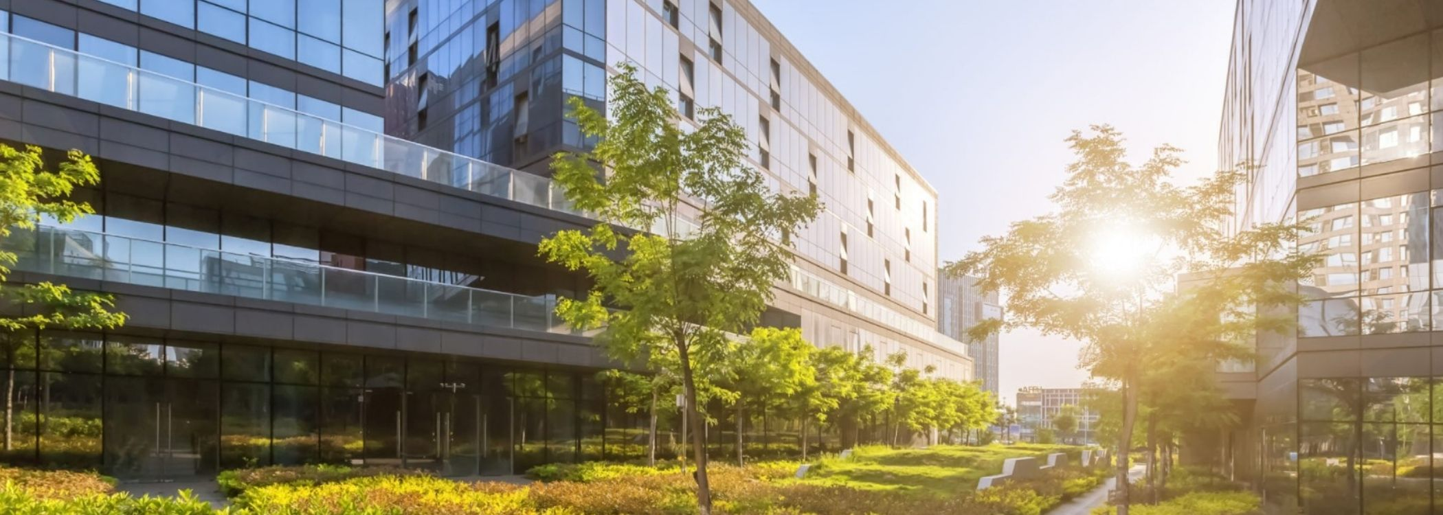 complete landscaping services for commercial buildings