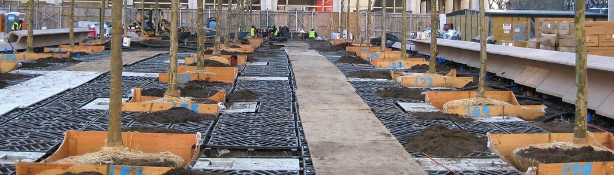 silva cells complete landscaping service