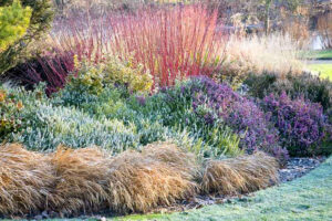 Fall Color with Shrubs Complete Landscaping Service