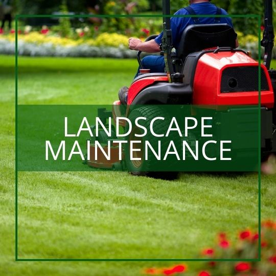 landscape maintenance services maryland virginia dc